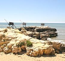 camping saint palais sur mer