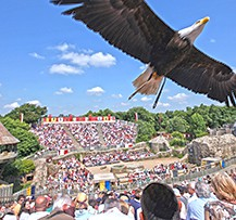 camping puy du fou