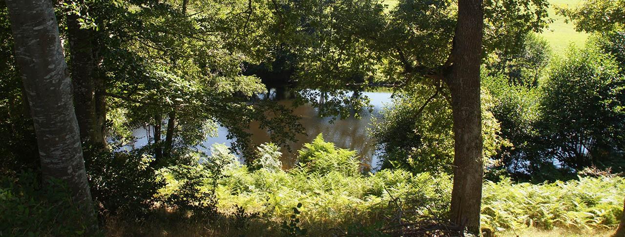 murmures-du-lignon-riviere-min.jpg