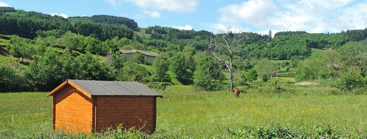 camping Le Paluet cavalerie