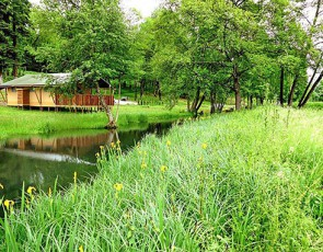 Camping Domaine du Buisson****