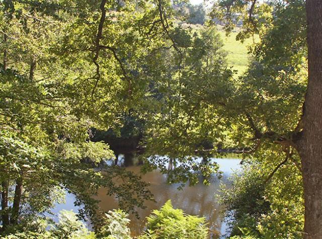 camping-murmures-du-lignon-riviere.jpg-3