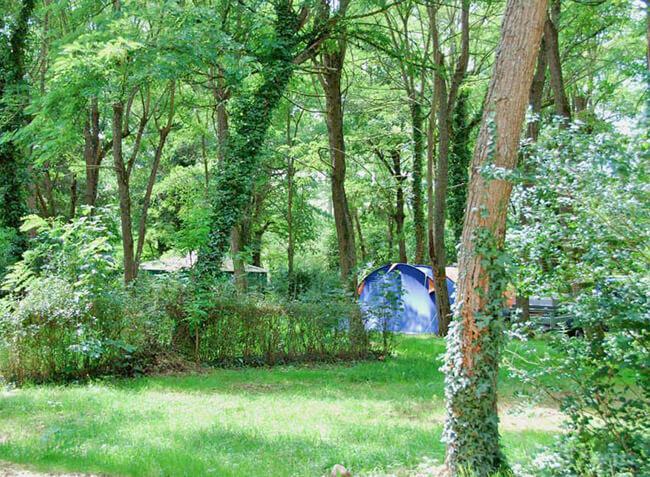 camping Le Sagne emplacement tentes-8